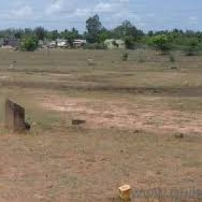PLOTS for sale @ VGP